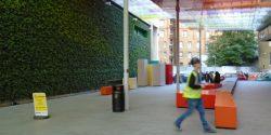Victoria BID green wall