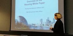 HZN Housing White Paper