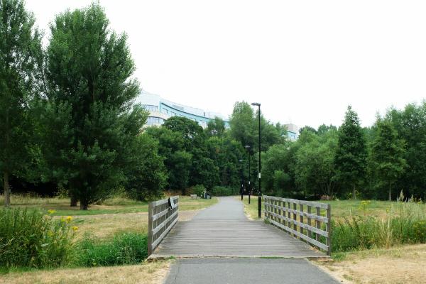 Ladywell Fields hospital link
