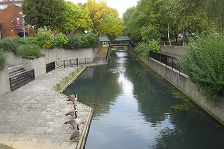 Harrow canal at Arnott Close before changes
