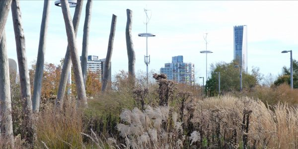 City Makers Forum: London's Green Recovery, Olympic park image