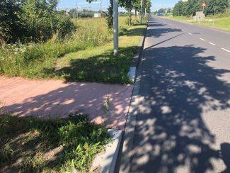 Bike path and road
